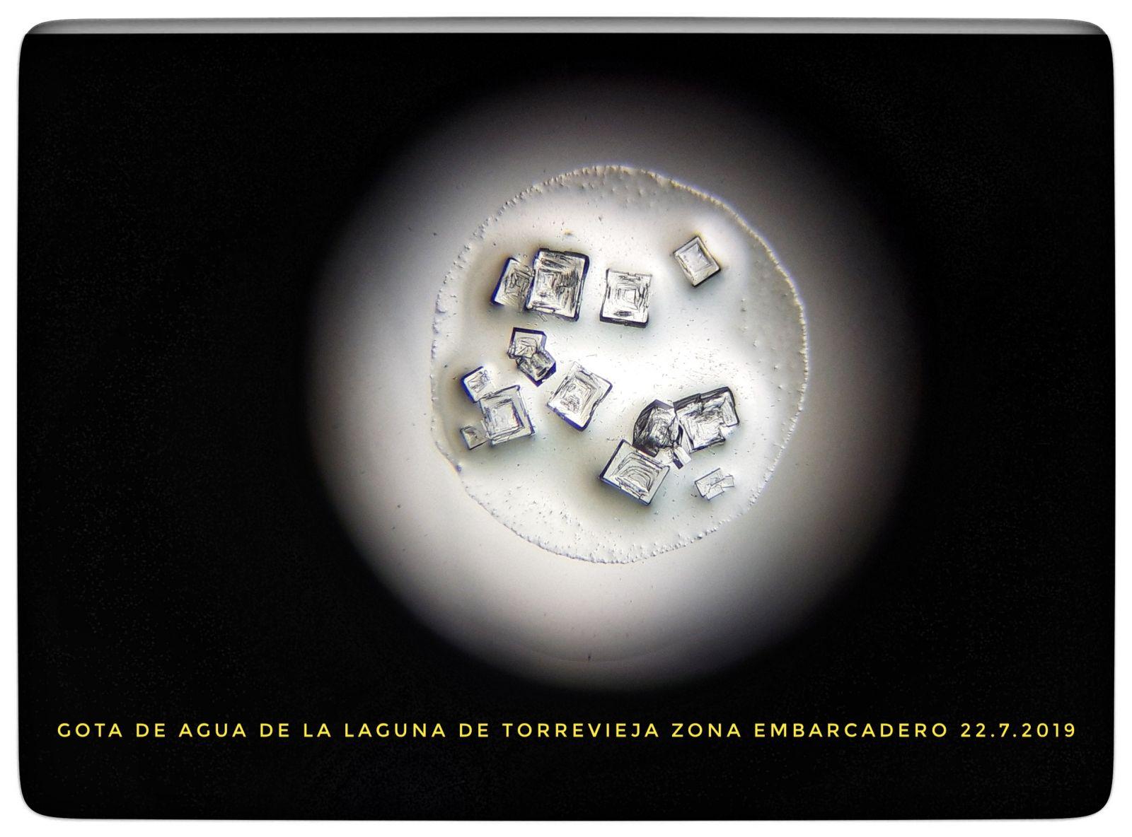 C:\Users\ANA\Documents\00- ARTESANÍA de sal de Torrevieja\00-PROCESO  elaboracion  de la artesanía en sal\articulo sobre el CUAJE\baja resolución\1.jpg