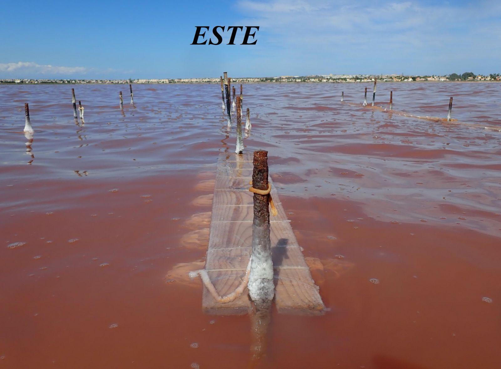 C:\Users\ANA\Documents\00- ARTESANÍA de sal de Torrevieja\00-PROCESO  elaboracion  de la artesanía en sal\articulo sobre el CUAJE\baja resolución\15 P8301062 - copia.JPG
